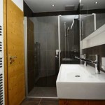 griwarent_apartment_adagio_grindelwald_bad